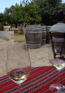 Tasting among the lemon trees at Nostos